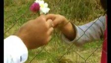 halit bilgiç- özgürlük çiçeğimsin orji...