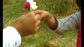 Halit Bilgiç - özgürlük çiçeğimsin Orji