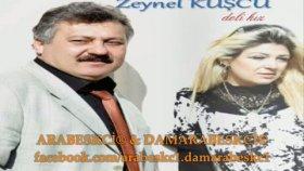 Zeynel Kuşçu - Çünkü Sevdim Ben 2011 Damarabeskc1