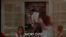 short cuts ı