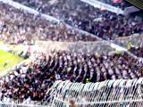 Şampiyon Beşiktaş-Çarşi-Dale