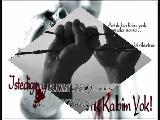Yerine_sevemem_mustafa_tilki03@hotmail.com