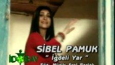 Sibel Pamuk - İğdeli Yar