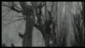 Selva Erdener - Sabahın Seherinde