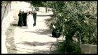 Aynur Haşhaş - Telli Turnam