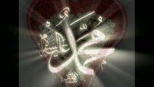 selman seven &efendim sultanım&müziksiz