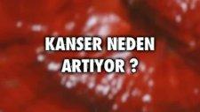 Kırmızı Reishi Mantarı Kanserden Korur Mu? - Uzm. Dr. Yavuz Dizdar