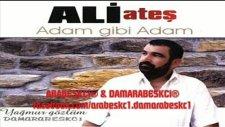 ali ateş - ofli hoca 2011 yeni albüm