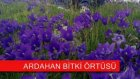 Ardahan @ Mehmet Ali Arslan Videos