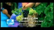 sibel can 2011facebook./bboyenes