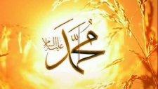 Selman Seven Gönlümün Gülü