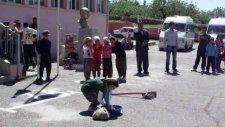 Nizip'in Salkım Kasabası
