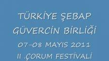 türkiye şebap güvercin birliği ıı. çorum festivali
