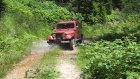 jeep görün