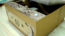 kutunun sabrı taşarsa?
