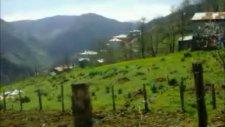 Pınarlar Köyü 2011