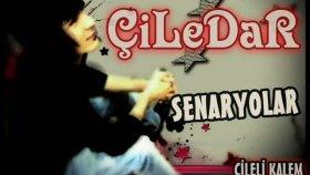 Seyhancrew- Senaryolar