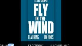 Lloyd Banks - Fly In The Wind Feat Jim Jones