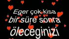 Sirgeehadi Gülüm Yandan !!