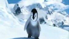penguenden kolbastı şov @tilla video