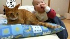dünyanın en sabırlı kedisi