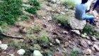 İshak Hoca Orman Kaya Köyü