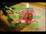 Ağlama Karanfil