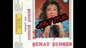 Şenay Şenses - Ben çirkinim