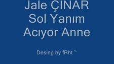Sol Yanım Acıyor Anne Jale Çınar