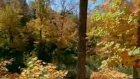 Mevsimlerden Sonbahardayım Erhan Güleryüz