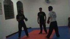 chinese boxing kung fu combat