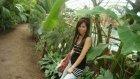 İzmirli Taylan