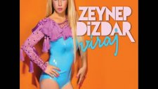 Zeynep Dizdar - Su Akar Yolunu Bulur - [2011]