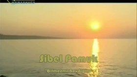 Sibel Pamuk - Bilmezmi Sevdiğim