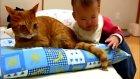 dünyanın en sabırlı kedisi hq facebook