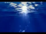 2006 Eurovision 1.si - Lordi, Hard Rock Hallelujah