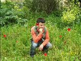 Gülay Teselli