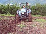 altınderede traktör td 65 cift surme