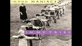 10000 manıacs - A Campfire Song