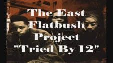 east flatbush project - tried by 12 - zmmo