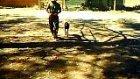 antkem k-9 köpek eğitimi
