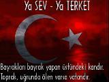 Ozan Arif - Vurgunum