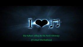 Dj Aykut Eray & Dj Anıl Altınay Tribal Melodica