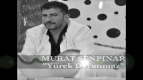 Murat Şenpınar-Yürek Dayanmaz-2011 Nette İlk Kez