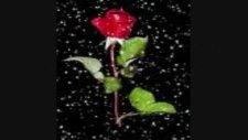 Seni Uzaktan Sevmek Aşkların En Güzeli @tilla Video