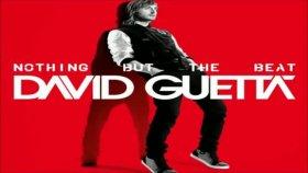 David Guetta Sarkıları Listesi