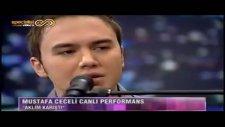 Mustafa Ceceli - Aklım Karıştı - [2011] - [cover]
