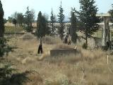 Anıtkaya Da Kabir Ziyareti(Miraç Kandili)