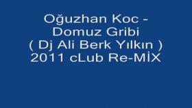Dj Ali Berk Yılkın - Oğuzhan Koc Domuz Gribi - 2011 Club Re Mix