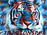 trabzonspor yeni marşi